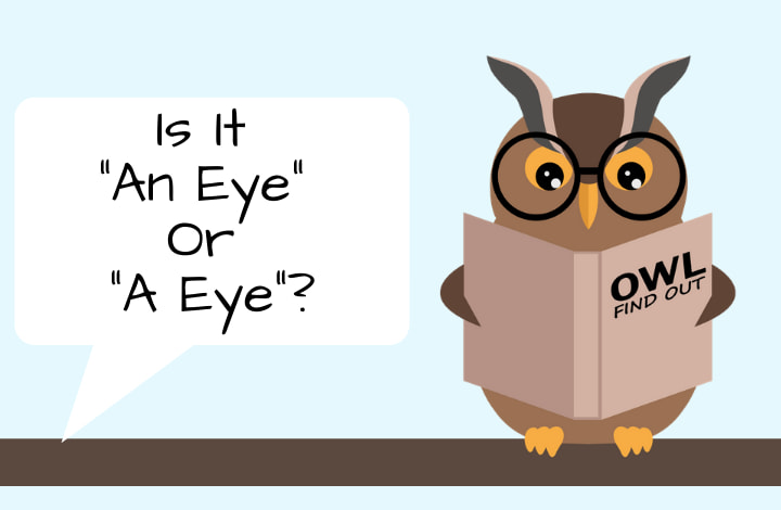 Image with Owl that asks an eye or a eye