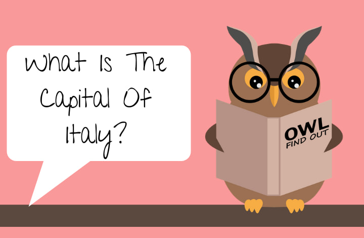 Image with Owl that says: What Is The Capital Of Italy?