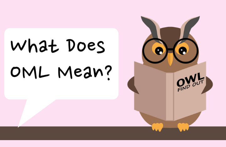 Image of Owl asking what does oml mean