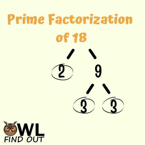 Prime factorization of 18: factor tree